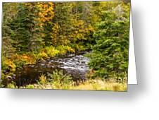 Mountain Stream In Autumn Greeting Card