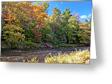 Mountain Stream In Early Autumn Greeting Card