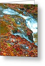 Mountain Stream Waterfall Autumn Greeting Card