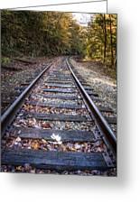 Mountain Tracks Greeting Card