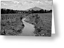 Mountain Valley Stream Greeting Card
