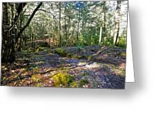 Mountain Walk 3 Greeting Card