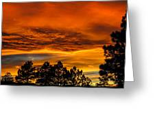 Mountain Wave Cloud Sunset With Pines Greeting Card