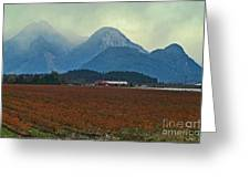 Mountains And Blueberries Greeting Card