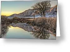 Mountains And Trees Greeting Card
