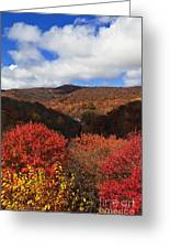 Mountains At Graveyard Fields Greeting Card