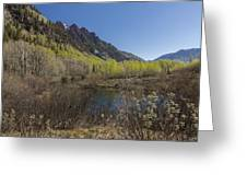 Mountains Co Sievers 3 Greeting Card