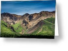 Mountainside Foliage Greeting Card