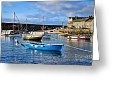 Mousehole Harbour Morning Greeting Card