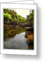 Mouth Of The Brook - Calm - Shallow Water Greeting Card