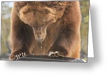Mouthwatering Greeting Card