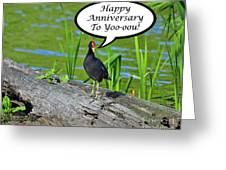Mouthy Moorhen Anniversary Card Greeting Card
