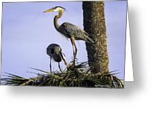 Mr. And Mrs. Heron Greeting Card