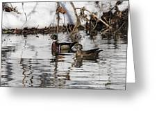 Mr. And Mrs. Wood Duck Greeting Card