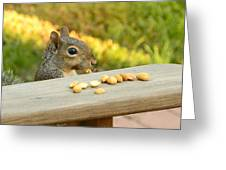 Mr. Squirrel Goes To Lunch Greeting Card