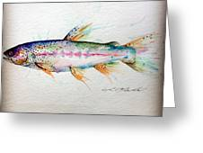 Mr Trout Greeting Card by Chris Mackie