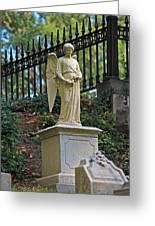 Mt Auburn Cemetery 3 Greeting Card