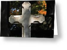 Mt Auburn Cemetery 9 Greeting Card