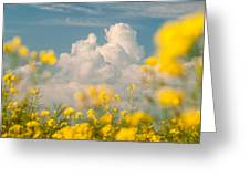 Mt Cloud Greeting Card by Davorin Mance