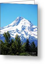 Mt. Hood Oregon Greeting Card