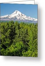 Mt. Hood Vertical Greeting Card