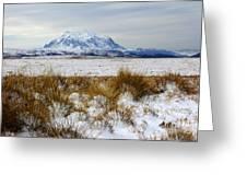 Mt Illimani In Winter Greeting Card