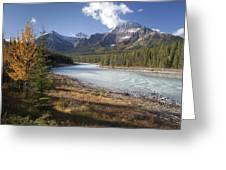 Mt Kerkeslin And Athabaska River Jasper Greeting Card