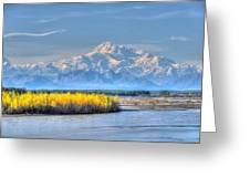 Mt Mckinley - Alaska Greeting Card