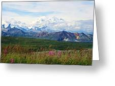 Mt. Mckinley Denali National Park Greeting Card