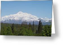 Mt. Mckinley 1 Greeting Card