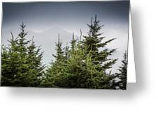 Mt. Mitchell In Fog Greeting Card