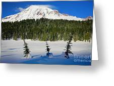 Mt Rainier And Three Trees Greeting Card
