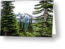 Mt. Rainier Framed Greeting Card