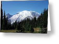 Mt. Rainier In August Greeting Card