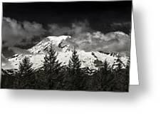 Mt Rainier Panorama B W Greeting Card