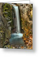 Mt Rainier Waterfall Greeting Card