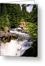 Mt. Rainier Waterfall Greeting Card