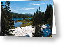 Mt. Rainier Wilderness Greeting Card
