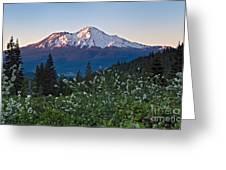 Mt. Shasta At Dawn Greeting Card