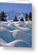 2m6403-mt. Tom From Sherwin Grade V Greeting Card