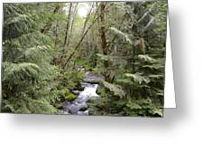 Mt.hood Wilderness Greeting Card