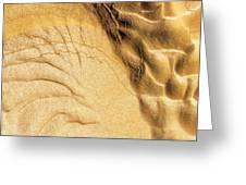 Mud Flare Greeting Card