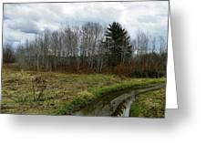 Mud Season Greeting Card by Gene Cyr
