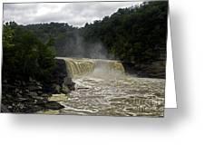 Muddy Water Greeting Card