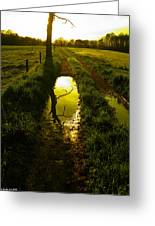Mudhole Mirror Greeting Card