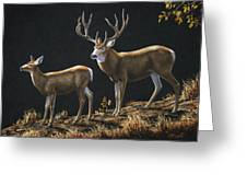 Mule Deer Ridge Greeting Card