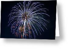 4th Of July Fireworks 12 Greeting Card by Howard Tenke