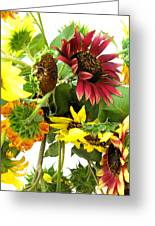 Multi-color Sunflowers Greeting Card