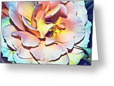 Multicolor Rose Photoart Greeting Card