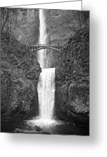 Multnomah Double Falls - Bw Greeting Card